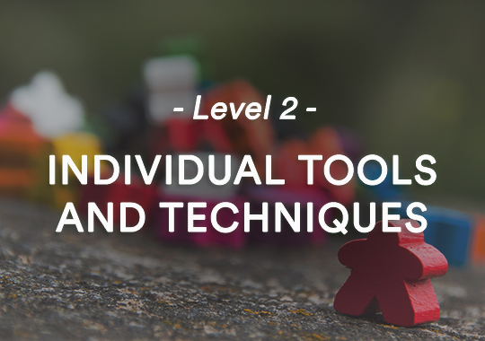 Level 2: Individual tools and techniques